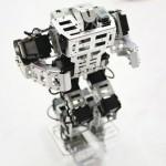 10hotrobot003